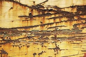Gartenhaus Bodenbelag Kratzer im Holz Fußboden