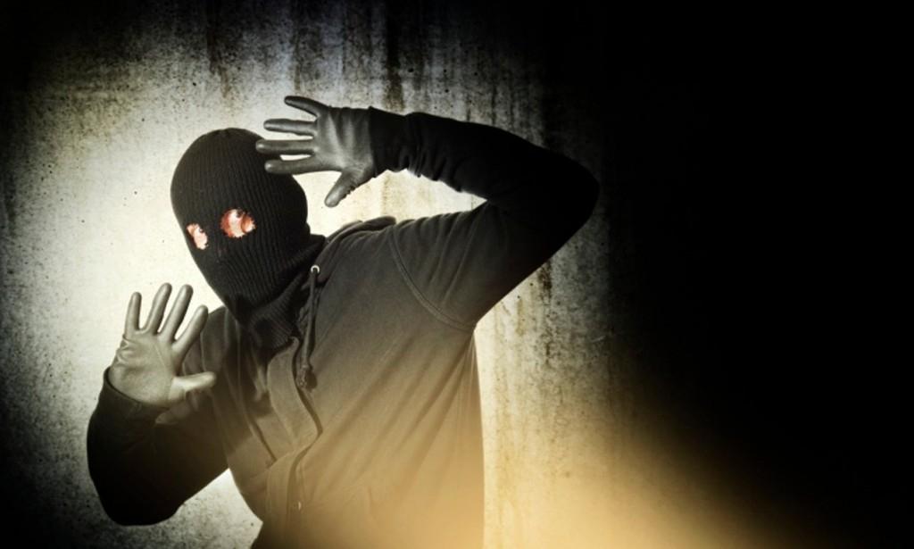 Gartenhaus einbruchsicher machen - Einbrecher ertappt