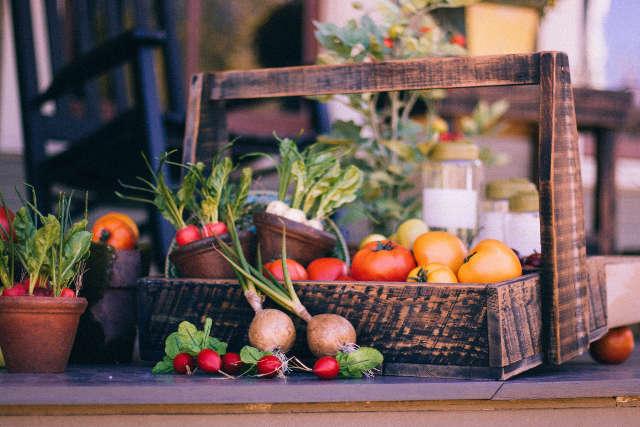 Hochbeet für Gemüse