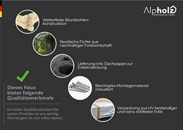 Alpholz Gerätehaus Antwerpen 210 x 210 cm